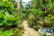 The Gardens & History of Barbados
